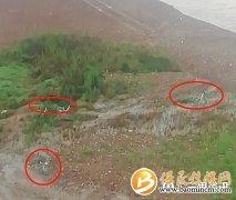 宝鸡植物园大桥下多辆共享单车被丢弃在河道!网友:谁