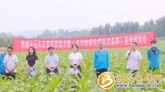 草地贪夜蛾对玉米生产危害大!韩城市
